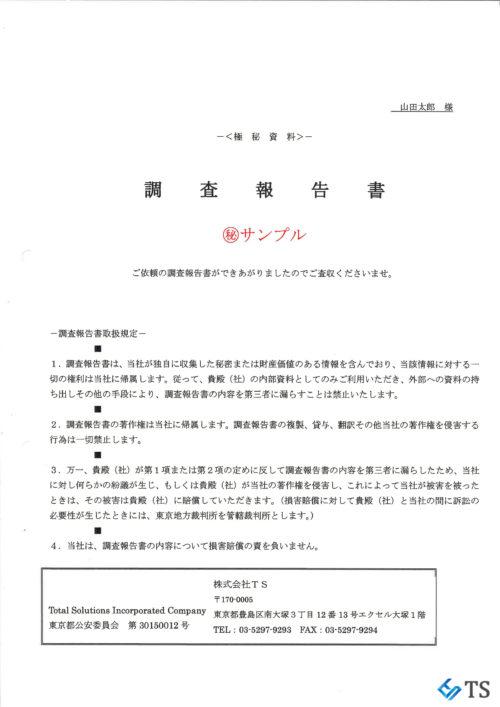 TS調査報告書