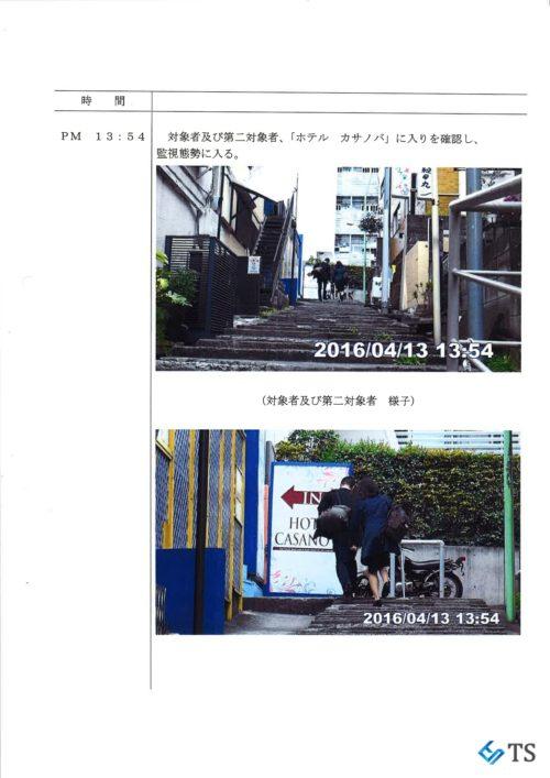TS調査報告書2