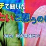 TSフジテレビ出演
