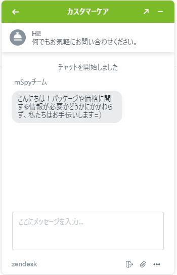 mspy日本語対応